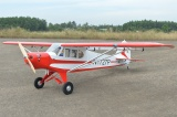 Black Horse  PIPER PA-18 SUPER CUB 3580mm ARF